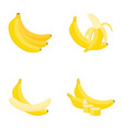 banana whole fruit half slice vector image