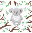 cartoon koala among the leaves and branches vector image