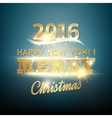 Christmas fir glow vector image vector image
