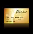 gold card conceptual vector image vector image