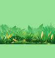 jungle topical plants on green background vector image vector image