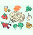 all brain food vector image vector image