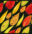 autumn pattern with leaves vector image vector image