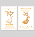 butchery shop poster with duck meat cutting charts vector image vector image