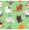 cartoon cats kitten seamless background vector image