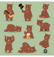 ccute cartoon bear emotions brown character vector image vector image