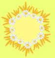 chamomile border vector image vector image