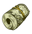 colorful money roll of dollars concept vector image