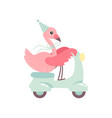 cute flamingo riding scooter wearing party hat vector image vector image