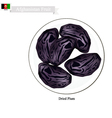 Dried Plum A Popular Fruit in Afghanistan vector image vector image