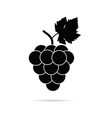 grape in black color vector image