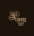 logo coffee leaves isolated on a dark vector image