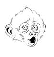monkey head vector image vector image