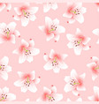 pink lily on light pink background vector image vector image