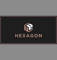 ue hexagon logo design inspiration vector image vector image