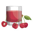 a glass fresh cherry juice vitamin refreshing vector image vector image