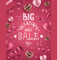 big valentines day sale vector image