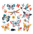 butterfly on flowers insect dragonflies vector image
