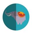 cute elephant circus icon vector image vector image