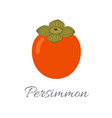 persimmon icon with title vector image vector image