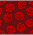 red rose on background vector image vector image