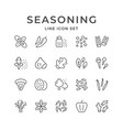 set line icons of seasoning vector image vector image