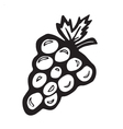 Simple Grapes vector image