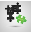Solution puzzle vector image vector image