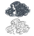 woman hair silhouette vector image
