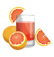 a glass fresh grapefruit juice vitamin vector image vector image