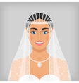 beautiful smiling bride in veil vector image vector image