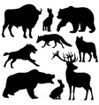 black outline wild forest animals vector image vector image