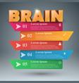 brain 3d business infographics vector image