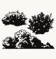 bushes vintage concept vector image