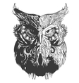 Owl Shadowesd Black vector image vector image