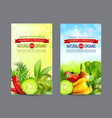 set of two vertical banners with realistic vector image