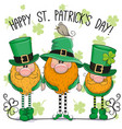 st patricks greeting card with three leprechauns vector image