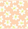 white lily on orange peach background vector image vector image