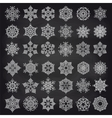 White showflakes set on chalkboard vector image