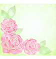 background with glitter and pink roses in corner vector image