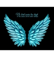 Color Bird Wing Background vector image