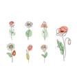 flowers set in simple minimal vector image