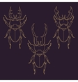 Set of horned beetles in line style Design vector image vector image