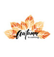 Watercolor painted autumn leaves banner fall