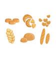 bakery products set bread baguette loaf hala vector image