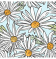 chamomile bloom pattern summer abstract botany vector image