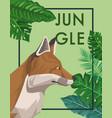 fox in the jungle vector image
