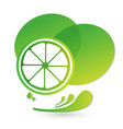 lime green splash juice of citrus icon vector image
