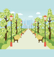 park alley with lanterns benches and green trees vector image