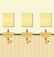 Row Of Lavatories With Mirrors vector image vector image